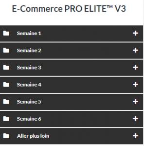 Yomi Denzel E-commerce Pro Elite V3